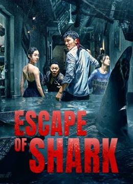 Escape-of-Shark-(2021)